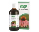 ECHINAFORCE GOTAS EQUINACEA 100ML VOGEL